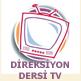 direksiyon dersi tv
