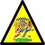 bayan sürücüler için kişisel güvenlik bayan direksiyon hocası
