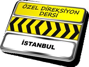 ozel direksiyon dersi istanbul
