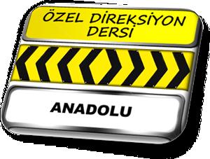 ozel direksiyon dersi Anadolu yakası