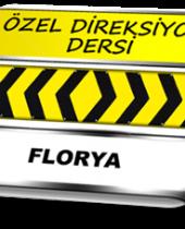 Florya özel direksiyon dersi TSBM