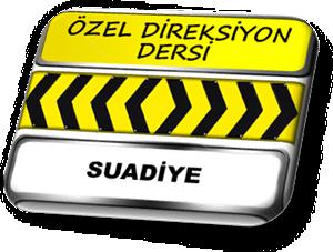 ozel direksiyon dersi Suadiye