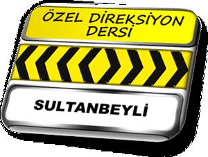 ozel direksiyon dersi sultanbeyli