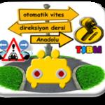 Anadolu yakası otomatik vites direksiyon dersi-TSBM