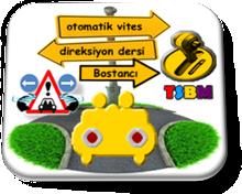 otomatik_vites_direksiyon_dersi_bostanci