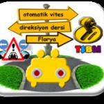 Florya otomatik vites direksiyon dersi-TSBM