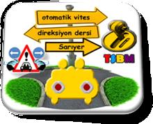otomatik_vites_direksiyon_dersi_sariyer