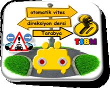 otomatik_vites_direksiyon_dersi_Tarabya